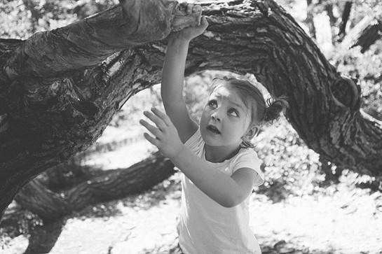 #71 – Climb a Tree