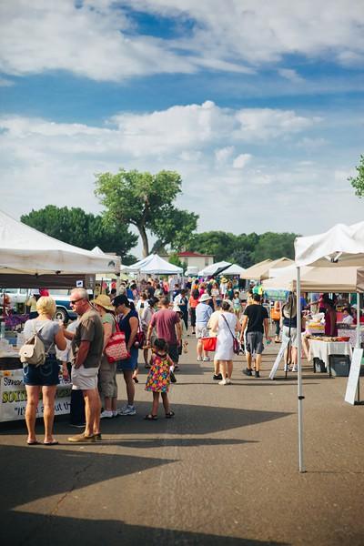 Albuquerque Lavender Festival