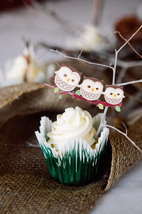 An Owl Birthday Party