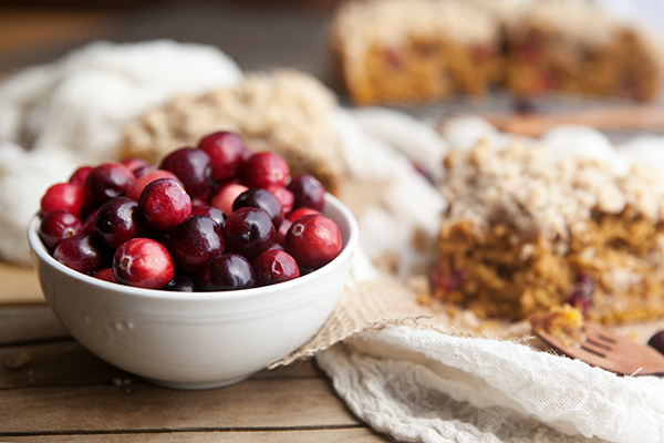 Pumpkin Cranberry Coffee Cake with Cinnamon Streusel | Some the Wiser