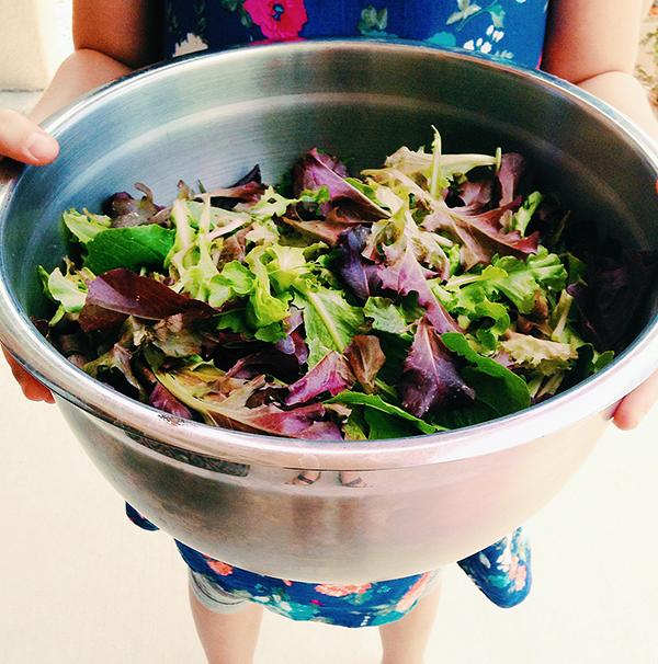 Backyard Garden Salad