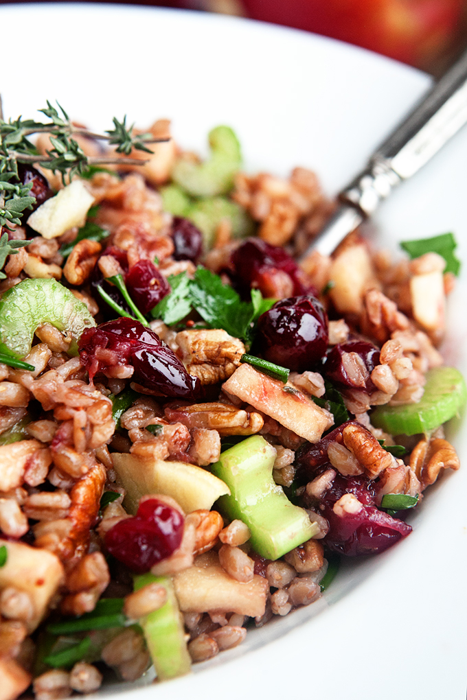 Fresh Cranberry Apple Farro Salad - a perfect combination of sweet and savory. A delicious grain salad for the holidays or an easy dish for everyday dinner.