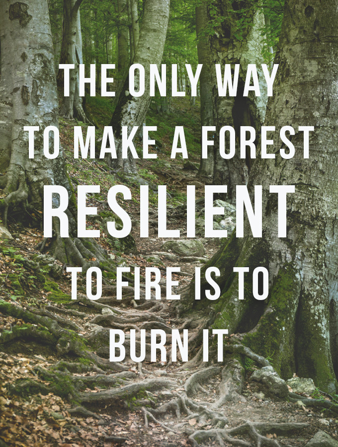 On Becoming More Resilient: We Can Do Hard Things