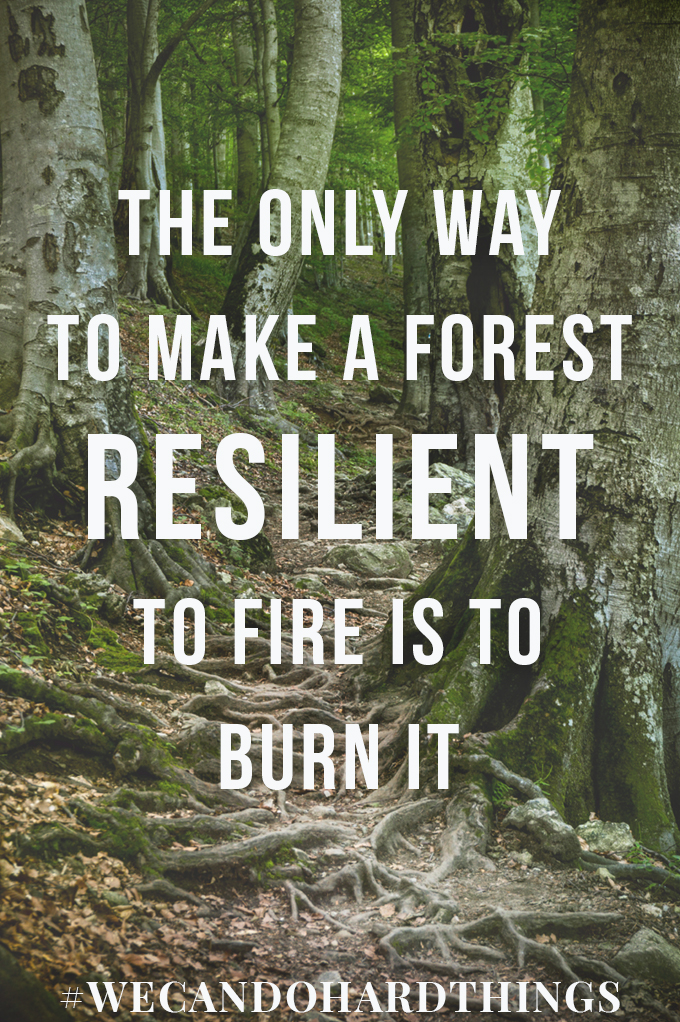Thoughts on becoming more resilient. Sometimes the only way out is through.  (Quote by Brian Walker)