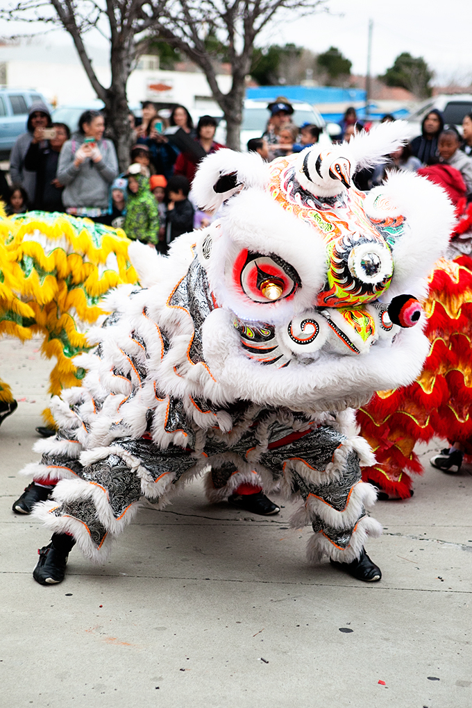 Dragon dance at the Albuquerque Chinese New Year Festival