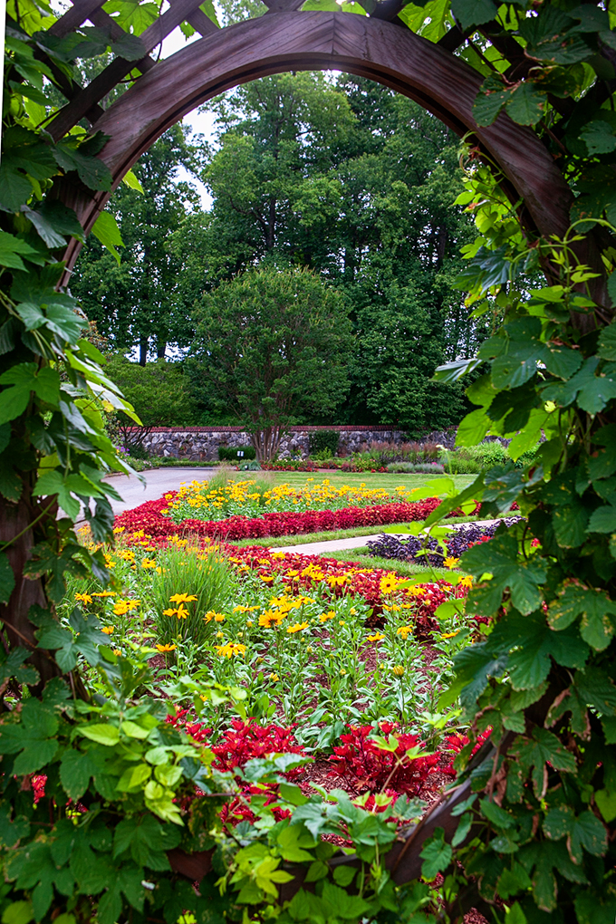 View through a vine covered window to bright colored flower garden at the Biltmore House