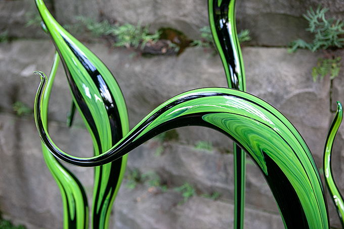 Green Plant ChihulyGlass Blown Sculpture at Biltmore Gardens