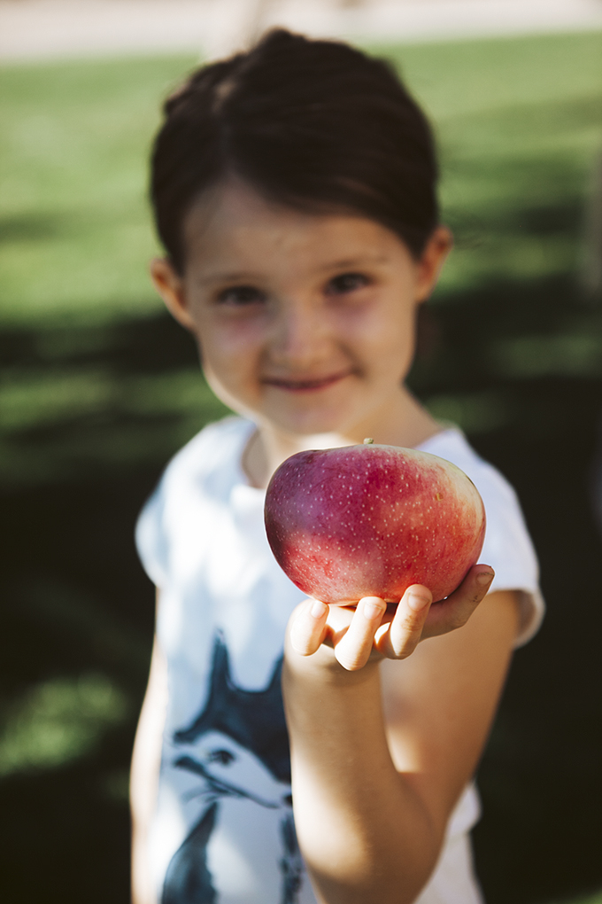 girl holding freshly picked red apple and our favorite apple recipes
