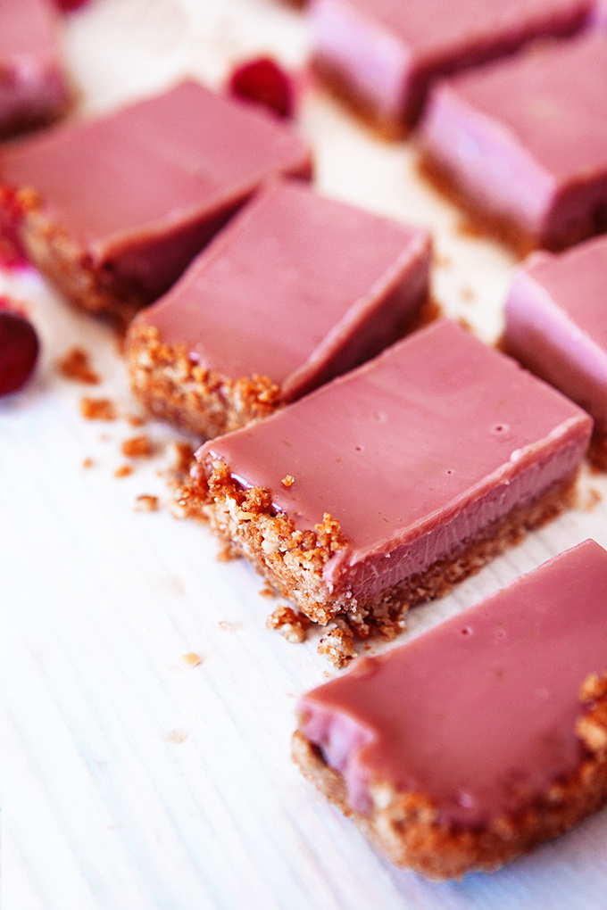 Close up of cranberry bars